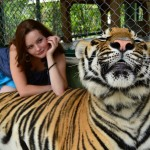 Фотосессия с тигром-от 40т.р(1 час)